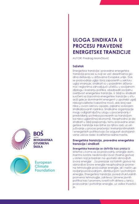 Publikacija Predrag Momčilović