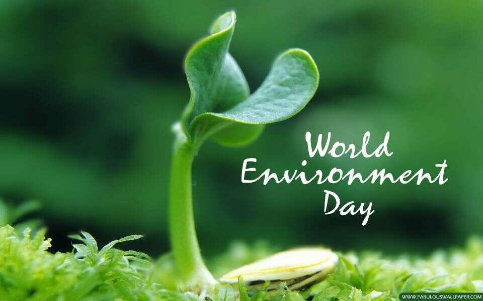 Svetski dan zaštite životne sredine