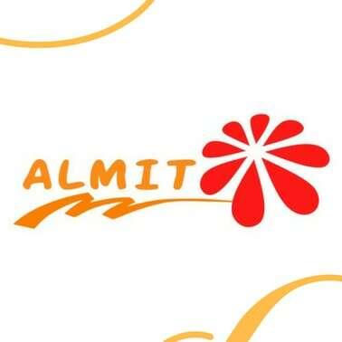 ALMIT logo